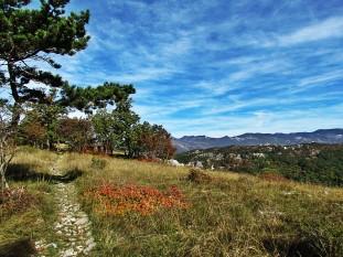 https://www.wikiloc.com/trail-running-trails/rijeka-trail-veli-vrh-14km-15325285/photo-9530012