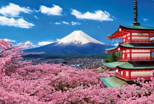 http://travelzom.com/mount-fuji/